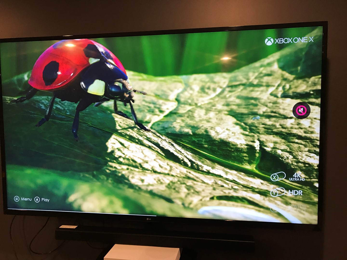 LG 65UJ6200 TV 4k and HD