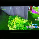 Fortnite Bush Camping, 7 Tips to Win