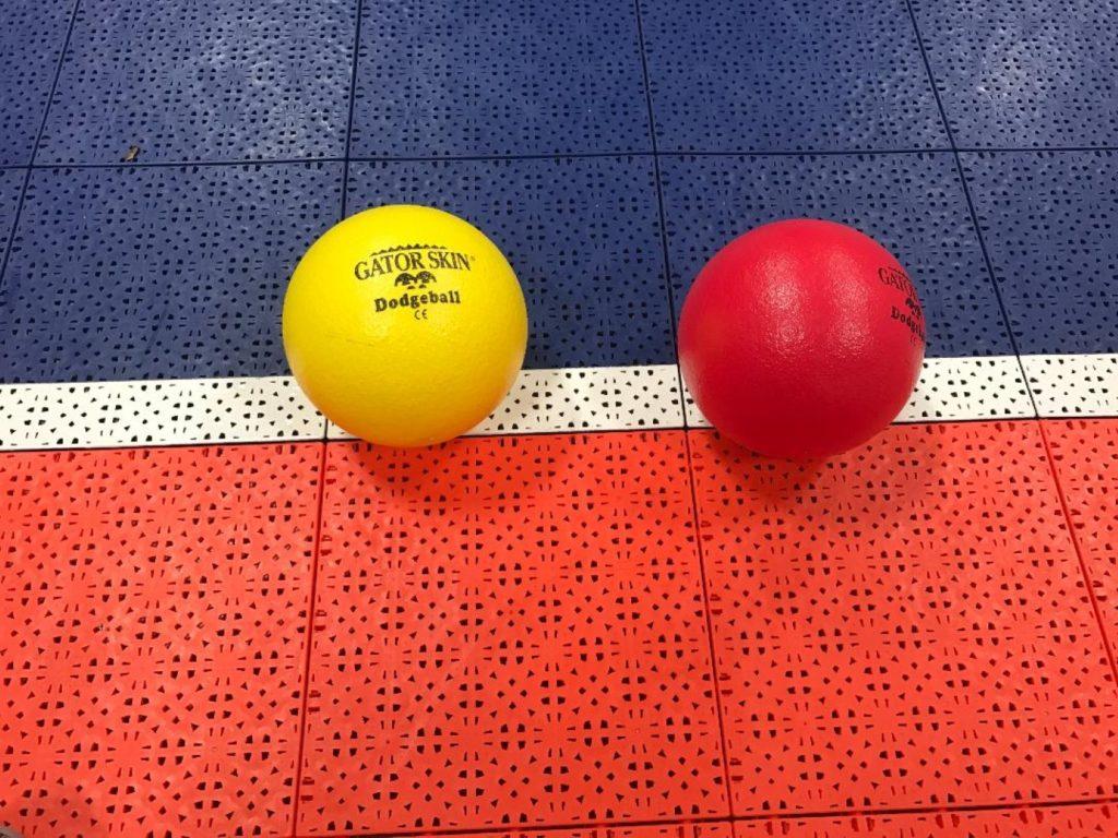 gator skin dodgeballs